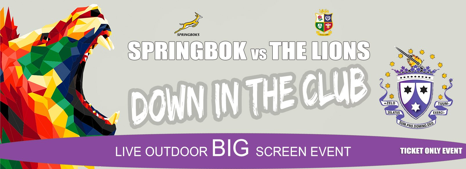 See the Springbok play the Lions on the big screen